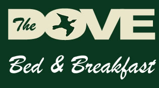 Dove Street Bed and Breakfast banner